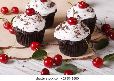 Beautiful chocolate cupcakes with white cream and cherry Black Forest close up on the table. horizontal