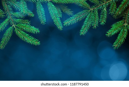 Beautiful Christmas Background with fresh fir tree. Frame of green Spruce branches on festive blue background. Template for design greeting and invitation card to Christmas. Web banner with copy space
