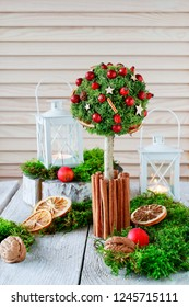 Beautiful Christmas decoration in tree shape with moss, cinnamon sticks and rose hip.