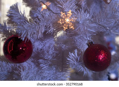 Beautiful Christmas decorations.   Ball shape Christmas decoration in real tree.