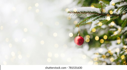 Beautiful Christmas and New years eve Background with Christmas red ball hanging on fir tree branches. Holiday greeting and invitation card with copy space. Wide screen Web banner or flyer