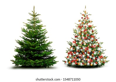 Beautiful christmas tree with Christmas Baubles isolated
