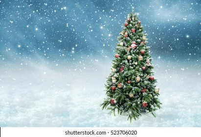 Beautiful christmas tree in wonderful snowy winter landscape