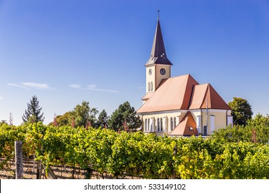 Beautiful Church In Vineyard - Vrbice, Czech Republic, Europe