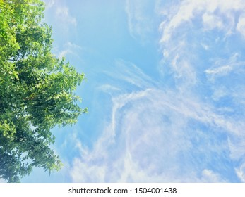 Beautiful cirrus clouds against the blue sky with some cumulo stratus and cirrus formations on an early spring afternoon are contrasted against the sky creating a fascinating cloud scape.
