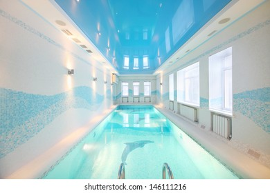 Beautiful clean pool with images of dolphins at bottom in big room.