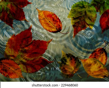 A beautiful close up of autumn leaves in a rippling pond