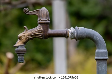 Beautiful closed water tap in the garden