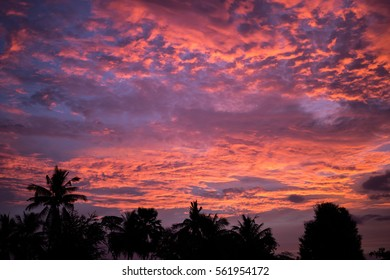 Beautiful Cloud sky dramatic red sunset and silhouette tree.