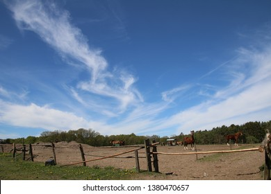 Beautiful cloudscape over the horse pasture