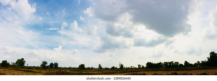 Beautiful cloudscape with rice field in panorama style,clear cloudscape with tree