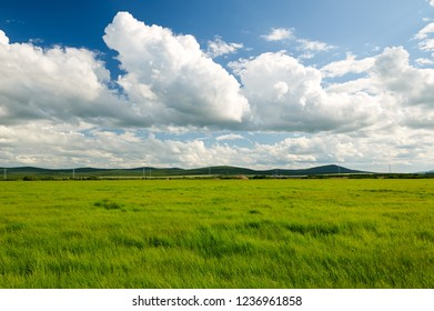 The beautiful cloudscape summer grassland of Hulunbuir, China.