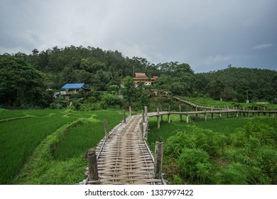 A Beautiful cloudy day around the Bamboo Bridge over the Rice Fields in Pai , North of Thailand. This magical place its a place that you must visit !