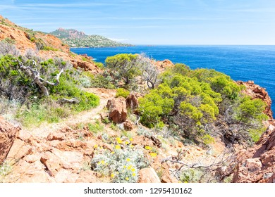 beautiful coast near Fréjus town in french riviera, France
