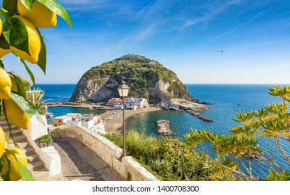 Beautiful coast of village Sant'Angelo, giant green rock in blue sea near Ischia Island, Italy. Sunny day, blue sky with white clouds and azure sea. Bunches of fresh yellow ripe lemons on foreground.