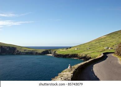 beautiful coastal road on Dingle peninsula, Ireland