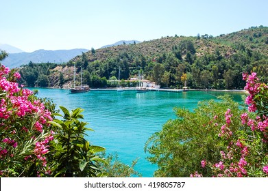 Beautiful coastline and mountains view against flowers  in Turkey