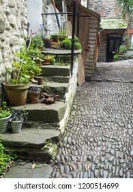 The beautiful cobbled streets of Clovelly in Devon , England