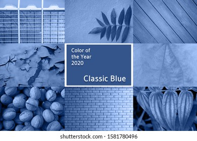 Beautiful collage created on concept of color of 2020. Main trend of the year.