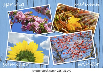 beautiful collection of images with four seasons of the year on blue wooden background