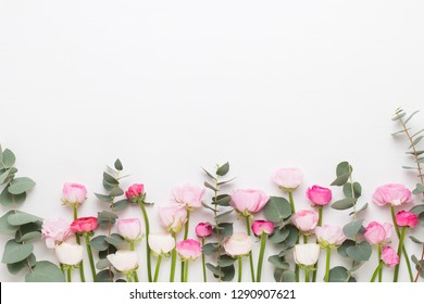 Beautiful colored ranunculus flowers on a white background. Valentines day greeting card.
