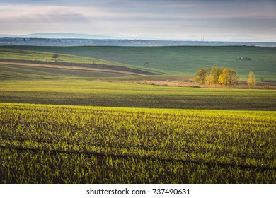 Beautiful colorful autumn abstract landscape with trees and curved fields in south moravia