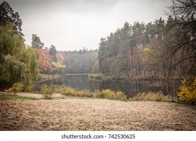 Beautiful colorful autumn landscape by the lake