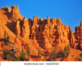 Beautiful colorful Bryce canyon National park, Utah, USA