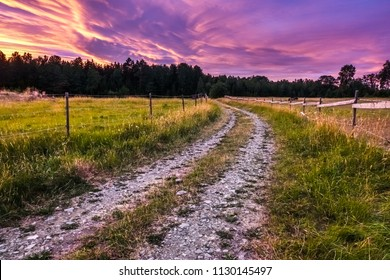 Beautiful, colorful and dramatic sky at sunset. Silhouette of forest and old dirt road and pasture in the foreground.