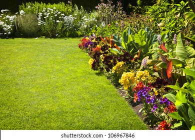 Beautiful colorful flower garden with various flowers