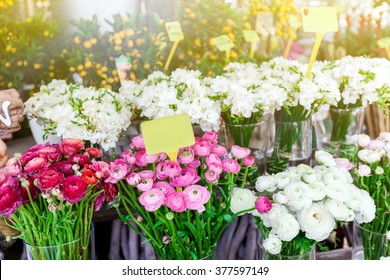 beautiful colorful flowers in flower shop