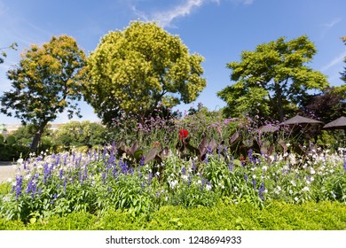 Beautiful colorful flowers growing at Stadtpark, City Park with nice blue sky day, Summer in Vienna, Austria