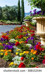 beautiful and colorful flowers mining the entrance of a drive way in the spring