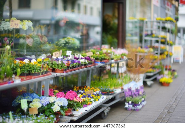 Beautiful colorful flowers sold on outdoor flower shop in Bremen, Germany