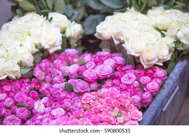 Beautiful colorful flowers in the street flower shop.