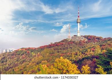 Beautiful colorful leaves on autumn at Namsan mountain or na pmsan public park in seoul city south korea.