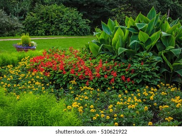 beautiful colorful summer flowers and butterflies on a green background in the garden or Park