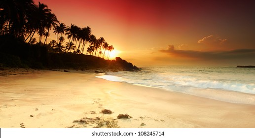 Beautiful colorful sunset over sea and boulders seen under the palms on Sri Lanka. Panorama