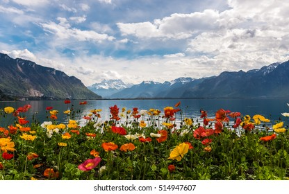 Beautiful colorful view on the Alps Mountains and Lake Leman from Montreux embankment. Springtime.