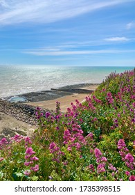 Beautiful and colorful view of the sea, sky, and flowering plants during low tide at the Rottingdean seafront in the United Kingdom.