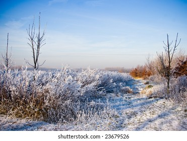Beautiful colors and light in a blue and white snowy landscape