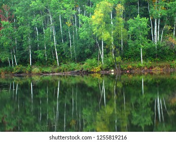 Beautiful colors reflect off a pond at Kettle Moraine State Forest in Wisconsin
