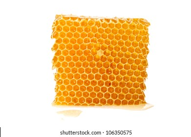 Beautiful combs with honey on white background