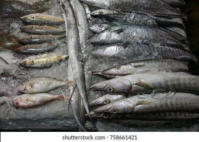 Beautiful composition with fishes and ice, fresh fish market