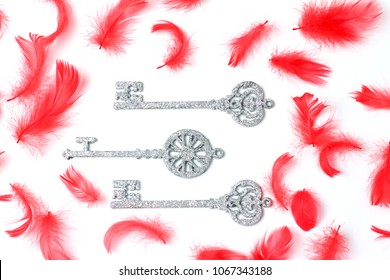 beautiful composition of St. Valentine's Day. red feathers and decorative keys. flat lay, top view, creative layout
