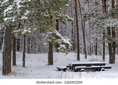Super The Table And Benches Are Made Of Natural Trees Images Download Free Architecture Designs Scobabritishbridgeorg