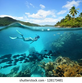Beautiful Coral reef with lots of fish and a woman floating in the sea