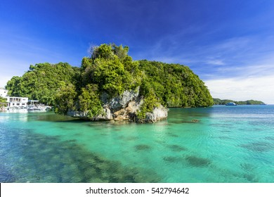 beautiful coral reef in parau
