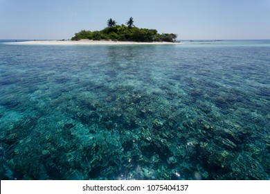 Beautiful coral reefs surrounding small tropical island with two palms