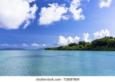 beautiful coral sea in taketomi island